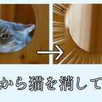 世界から猫を消してみた【世界から猫が消えたなら】