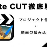 『Cute CUT』の使い方1【プロジェクト作成・動画の読み込み編】