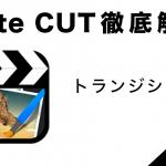 『Cute CUT』の使い方4【カスタムトランジション編】